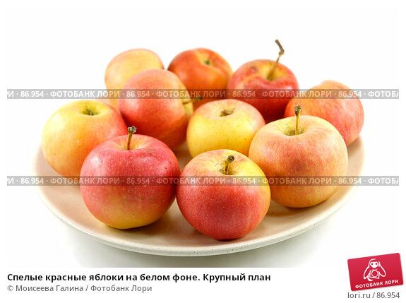 Спелые красные яблоки на белом фоне. Крупный план, фото № 86954, снято 16 сентября 2007 г. (c) Моисеева Галина / Фотобанк Лори