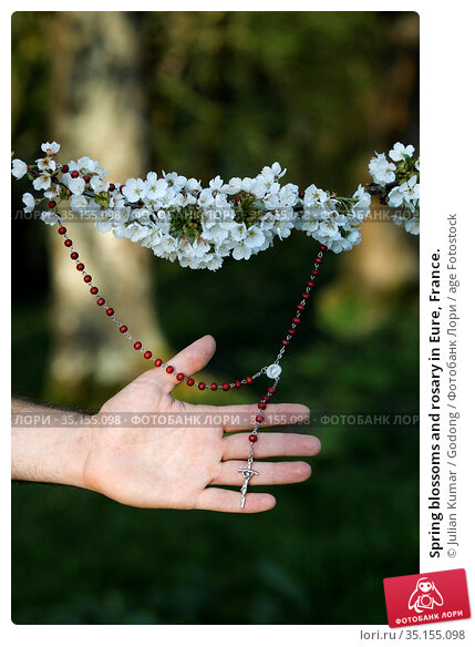 Spring blossoms and rosary in Eure, France. Стоковое фото, фотограф Julian Kumar / Godong / age Fotostock / Фотобанк Лори