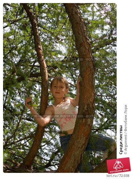 Среди листвы, фото № 72038, снято 1 июля 2007 г. (c) Argument / Фотобанк Лори