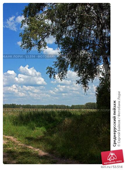 Среднерусский пейзаж, фото № 53514, снято 5 августа 2004 г. (c) Сергей Байков / Фотобанк Лори