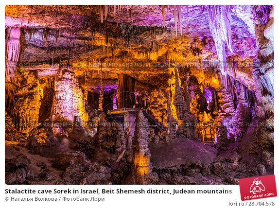Купить «Stalactite cave Sorek in Israel, Beit Shemesh district, Judean mountains», фото № 28704578, снято 9 июня 2018 г. (c) Наталья Волкова / Фотобанк Лори