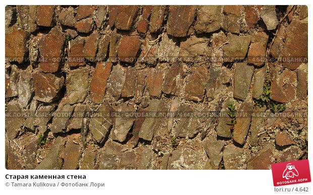 Старая каменная стена , фото № 4642, снято 5 июня 2006 г. (c) Tamara Kulikova / Фотобанк Лори