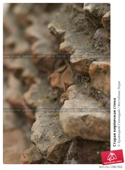 Старая кирпичная стена, фото № 240502, снято 22 января 2017 г. (c) Кравецкий Геннадий / Фотобанк Лори