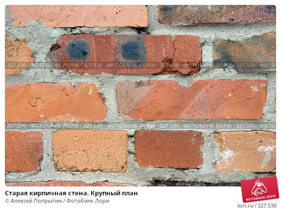 Старая кирпичная стена. Крупный план, фото № 327530, снято 10 июля 2006 г. (c) Алексей Попрыгин / Фотобанк Лори