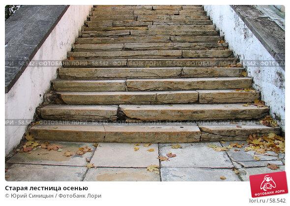 Старая лестница осенью, фото № 58542, снято 16 октября 2004 г. (c) Юрий Синицын / Фотобанк Лори