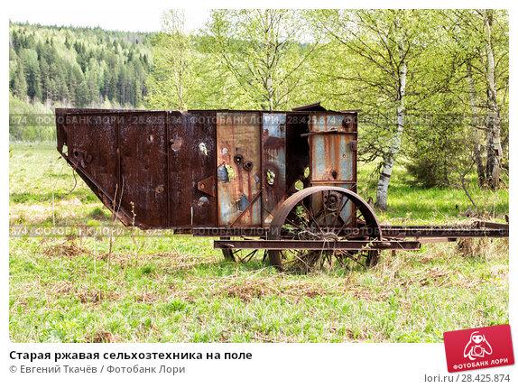 Купить «Старая ржавая сельхозтехника на поле», фото № 28425874, снято 21 мая 2016 г. (c) Евгений Ткачёв / Фотобанк Лори