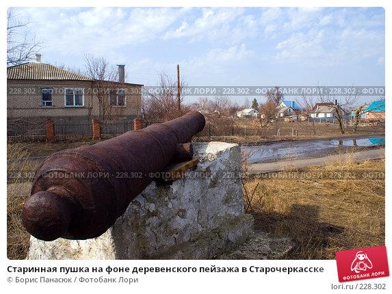 Старинная пушка на фоне деревенского пейзажа в Старочеркасске, фото № 228302, снято 8 марта 2008 г. (c) Борис Панасюк / Фотобанк Лори