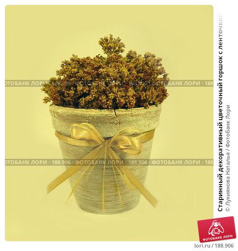 Старинный декоративный цветочный горшок с ленточкой, фото № 188906, снято 29 января 2008 г. (c) Лукиянова Наталья / Фотобанк Лори