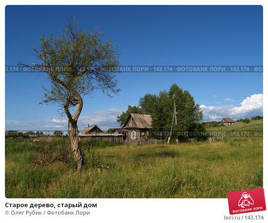 Старое дерево, старый дом, фото № 143174, снято 8 июля 2007 г. (c) Олег Рубик / Фотобанк Лори