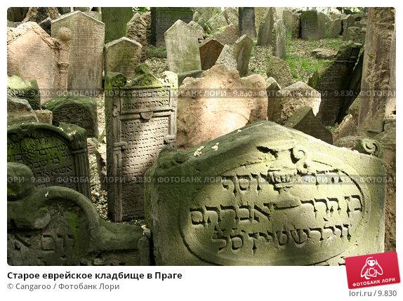 Старое еврейское кладбище в Праге, фото № 9830, снято 5 июня 2006 г. (c) Cangaroo / Фотобанк Лори