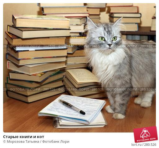 Купить «Старые книги и кот», фото № 280526, снято 11 мая 2007 г. (c) Морозова Татьяна / Фотобанк Лори