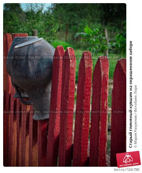 Старый глиняный кувшин на окрашенном заборе, фото № 124790, снято 25 августа 2007 г. (c) Мария Разумная / Фотобанк Лори