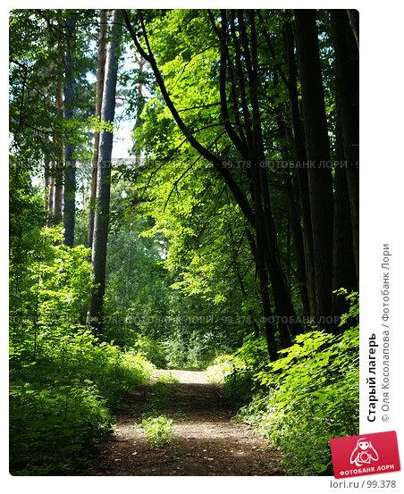 Старый лагерь, фото № 99378, снято 22 июля 2007 г. (c) Оля Косолапова / Фотобанк Лори