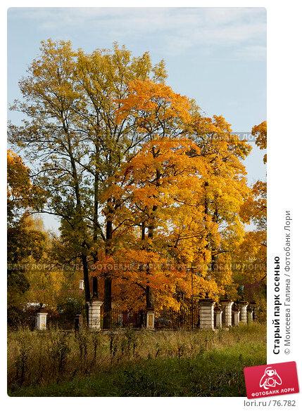 Старый парк осенью, фото № 76782, снято 7 октября 2006 г. (c) Моисеева Галина / Фотобанк Лори