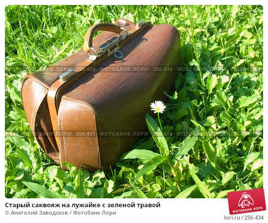 Старый саквояж на лужайке с зеленой травой, фото № 256434, снято 23 июля 2006 г. (c) Анатолий Заводсков / Фотобанк Лори