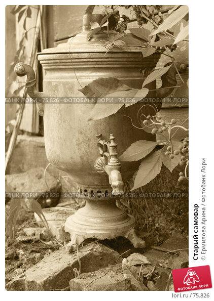 Купить «Старый самовар», фото № 75826, снято 20 августа 2007 г. (c) Ермилова Арина / Фотобанк Лори