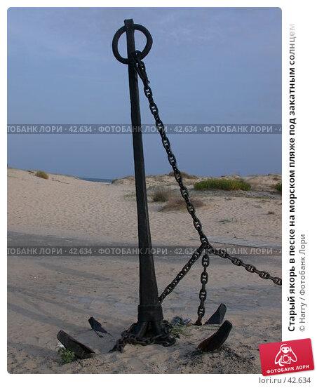 Купить «Старый якорь в песке на морском пляже под закатным солнцем», фото № 42634, снято 26 сентября 2003 г. (c) Harry / Фотобанк Лори