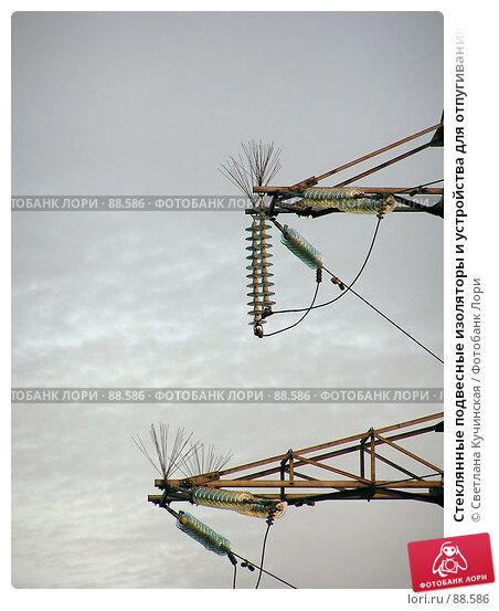 Купить «Стеклянные подвесные изоляторы и устройства для отпугивания птиц на опоре ЛЭП», фото № 88586, снято 23 апреля 2018 г. (c) Светлана Кучинская / Фотобанк Лори