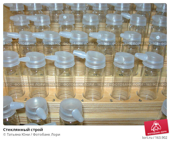 Купить «Стеклянный строй», эксклюзивное фото № 163902, снято 3 октября 2007 г. (c) Татьяна Юни / Фотобанк Лори