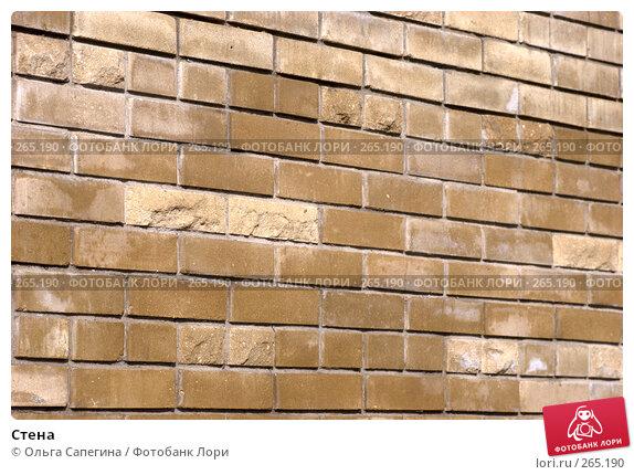 Стена, фото № 265190, снято 17 октября 2007 г. (c) Ольга Сапегина / Фотобанк Лори
