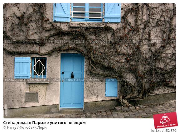 Стена дома в Париже увитого плющом, фото № 152870, снято 27 февраля 2006 г. (c) Harry / Фотобанк Лори