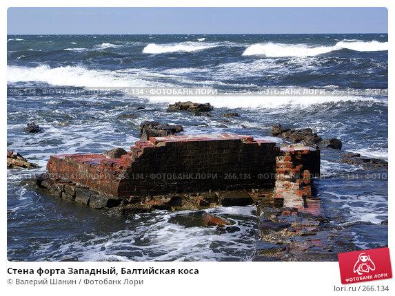 Купить «Стена форта Западный, Балтийская коса», фото № 266134, снято 23 июля 2007 г. (c) Валерий Шанин / Фотобанк Лори