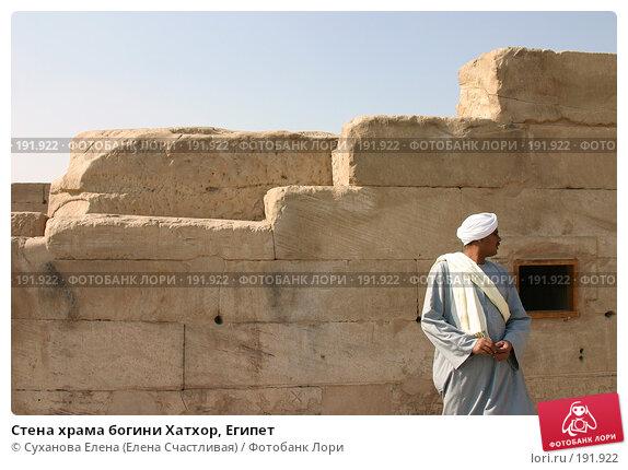 Купить «Стена храма богини Хатхор, Египет», фото № 191922, снято 25 января 2008 г. (c) Суханова Елена (Елена Счастливая) / Фотобанк Лори
