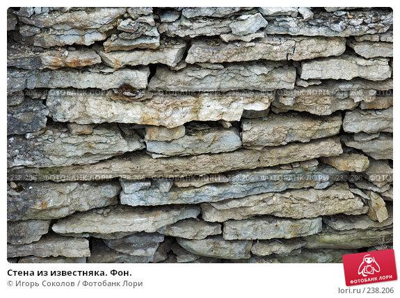Стена из известняка. Фон., фото № 238206, снято 25 марта 2008 г. (c) Игорь Соколов / Фотобанк Лори