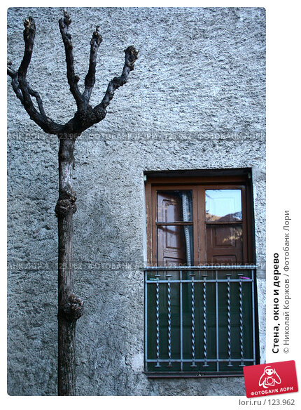 Стена, окно и дерево, фото № 123962, снято 27 декабря 2006 г. (c) Николай Коржов / Фотобанк Лори