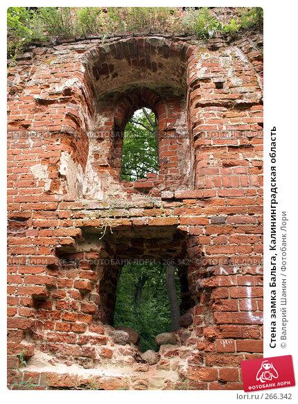 Стена замка Бальга, Калининградская область, фото № 266342, снято 29 июля 2007 г. (c) Валерий Шанин / Фотобанк Лори