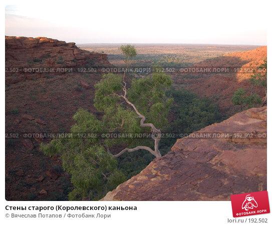 Купить «Стены старого (Королевского) каньона», фото № 192502, снято 15 октября 2006 г. (c) Вячеслав Потапов / Фотобанк Лори