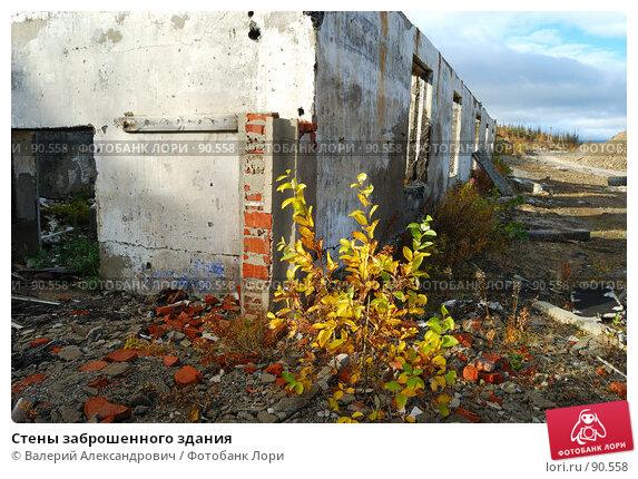 Стены заброшенного здания, фото № 90558, снято 27 сентября 2007 г. (c) Валерий Александрович / Фотобанк Лори