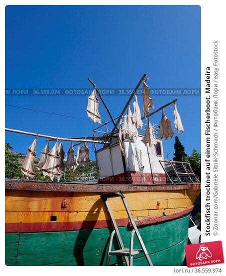 Stockfisch trocknet auf einem Fischerboot. Madeira. Стоковое фото, фотограф Zoonar.com/Gabriele Sitnik-Schmach / easy Fotostock / Фотобанк Лори