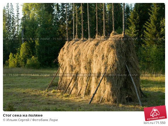 Стог сена на поляне, фото № 71550, снято 13 августа 2006 г. (c) Ильин Сергей / Фотобанк Лори