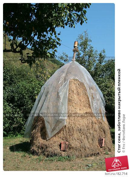 Стог сена, заботливо накрытый пленкой, фото № 82714, снято 28 августа 2007 г. (c) Fro / Фотобанк Лори
