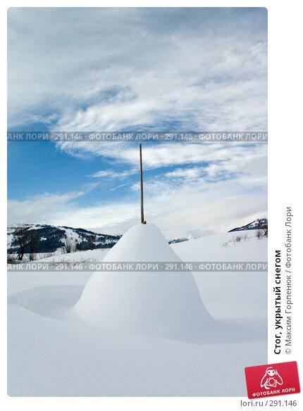 Стог, укрытый снегом, фото № 291146, снято 21 февраля 2005 г. (c) Максим Горпенюк / Фотобанк Лори