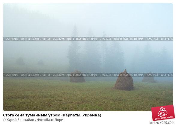 Купить «Стога сена туманным утром (Карпаты, Украина)», фото № 225694, снято 29 сентября 2007 г. (c) Юрий Брыкайло / Фотобанк Лори