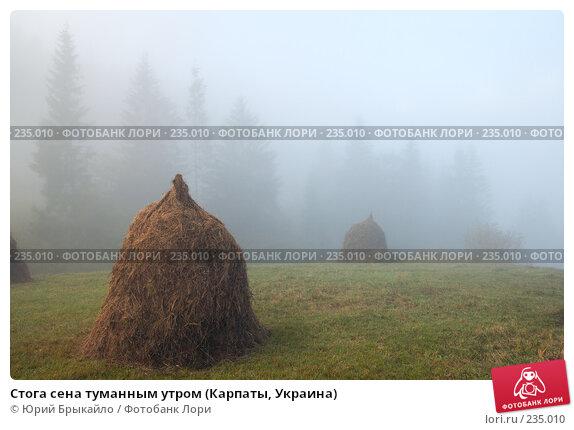 Стога сена туманным утром (Карпаты, Украина), фото № 235010, снято 29 сентября 2007 г. (c) Юрий Брыкайло / Фотобанк Лори