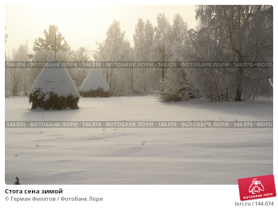 Стога сена зимой, фото № 144074, снято 8 ноября 2007 г. (c) Герман Филатов / Фотобанк Лори
