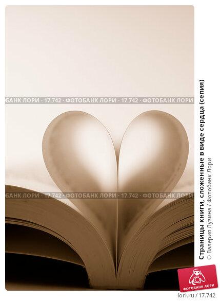 Страницы книги, сложенные в виде сердца (сепия), фото № 17742, снято 15 января 2007 г. (c) Валерия Потапова / Фотобанк Лори