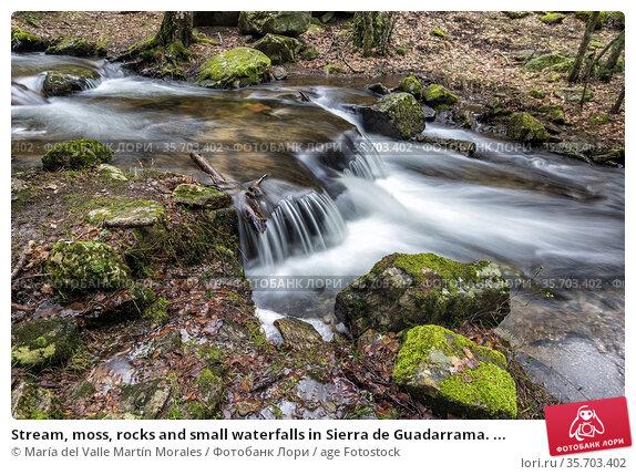Stream, moss, rocks and small waterfalls in Sierra de Guadarrama. ... Стоковое фото, фотограф María del Valle Martín Morales / age Fotostock / Фотобанк Лори
