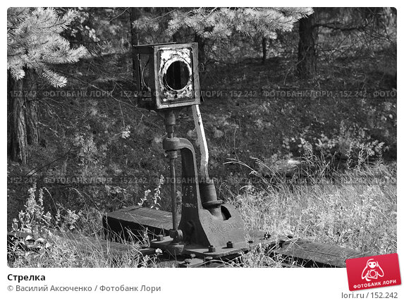 Стрелка, фото № 152242, снято 11 августа 2007 г. (c) Василий Аксюченко / Фотобанк Лори