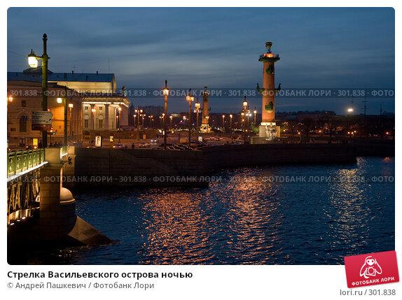 Стрелка Васильевского острова ночью, фото № 301838, снято 28 апреля 2008 г. (c) Андрей Пашкевич / Фотобанк Лори