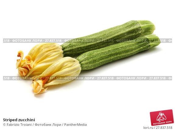 Купить «Striped zucchini», фото № 27837518, снято 22 февраля 2018 г. (c) PantherMedia / Фотобанк Лори