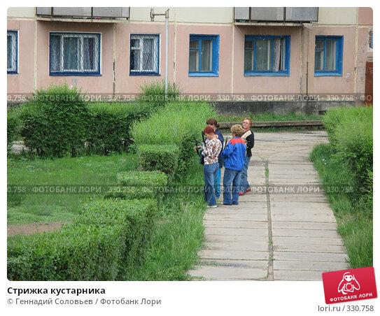 Стрижка кустарника, фото № 330758, снято 23 июня 2008 г. (c) Геннадий Соловьев / Фотобанк Лори