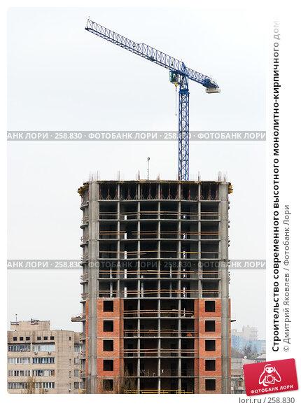 Строительство современного высотного монолитно-кирпичного дома (Киев, Украина), фото № 258830, снято 12 апреля 2008 г. (c) Дмитрий Яковлев / Фотобанк Лори