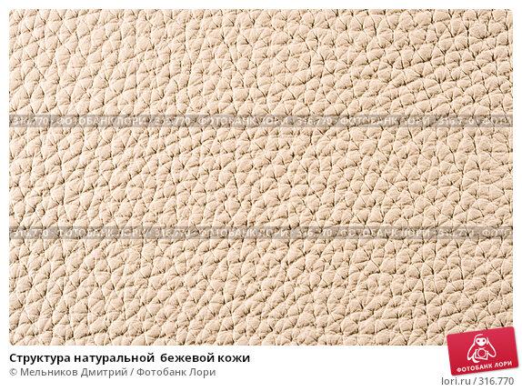 Структура натуральной  бежевой кожи, фото № 316770, снято 11 мая 2008 г. (c) Мельников Дмитрий / Фотобанк Лори