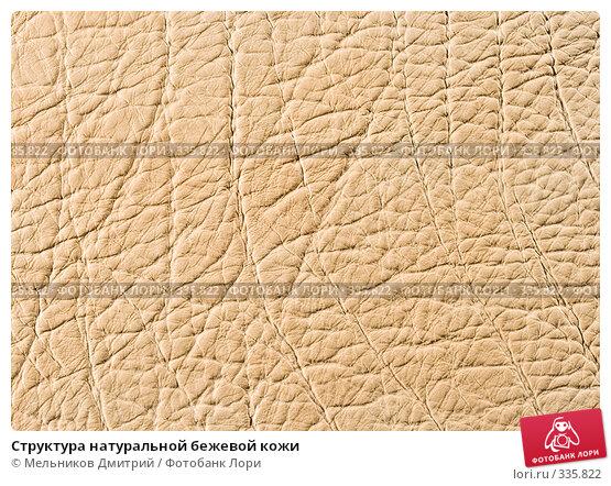 Структура натуральной бежевой кожи, фото № 335822, снято 11 мая 2008 г. (c) Мельников Дмитрий / Фотобанк Лори