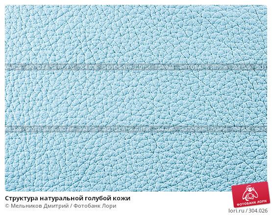 Структура натуральной голубой кожи, фото № 304026, снято 11 мая 2008 г. (c) Мельников Дмитрий / Фотобанк Лори