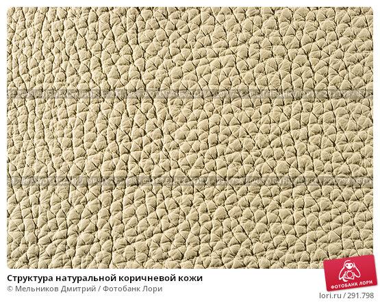 Структура натуральной коричневой кожи, фото № 291798, снято 11 мая 2008 г. (c) Мельников Дмитрий / Фотобанк Лори